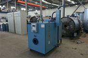 0.2吨含节能器燃气蒸汽发生器