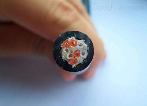 上海市扁平电缆ZR-YGGB-5*2.5