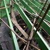 山西霍州乙烯基玻璃鳞片胶泥企业名录