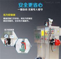 60公斤燃氣蒸汽鍋爐
