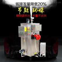 100公斤食品加工蒸汽发生器