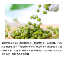 济南五谷杂粮微波熟化机厂家