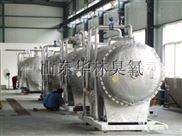 河南大型臭氧发生器正品保证