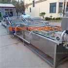 HB-zn6000广西桑芽菜漂烫机 杀青生产线及成套设备
