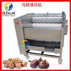 TS-M300土豆脱皮清洗机 花生马蹄清洗去泥机