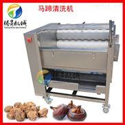 根莖類藥材清洗機 土豆去皮機