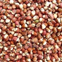 连续式豇豆干燥设备 微波烘干机厂家