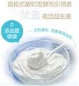 直投型酸奶發酵劑賣點好
