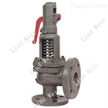 供应林德伟特蒸汽系统优质LSV系列安全阀