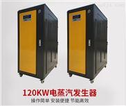 低氮环保燃煤锅炉改造用45KW电蒸汽发生器