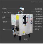 全自动电蒸汽发生器厂家锅炉