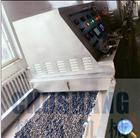 设计化工粉状微波干燥设备