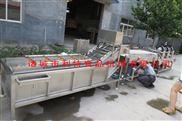供应红枣毛刷清洗机果蔬喷淋清洗设备
