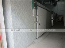 广州商用冷冻库欧雪厂家上门安装