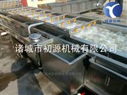 QX-4500-小龙虾超声波清洗机