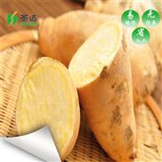 SD-RB6P-陕西红薯烘干机空气能烘干设备厂家