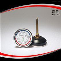 WHT-6温度压力一体表