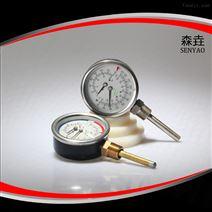 WHT-7温度压力一体表