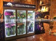 浙江鲜花保鲜冰柜三开门的要多少钱一台