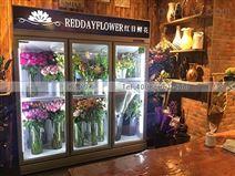 重庆鲜花保鲜柜设备一般一台要多少钱