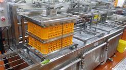 商用净菜加工设备厂家蔬菜自动清洗机