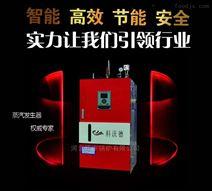 电蒸汽发生器 LDR0.1
