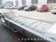 气泡辣椒清洗机,苏州连续式芹菜清洗机