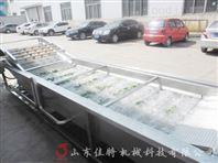 小型连续式蔬菜清洗机