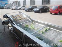 安徽气泡式竹笋清洗机用水循环使用