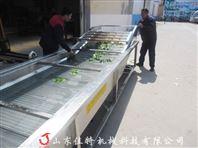 安徽连续式蔬菜清洗机
