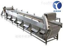 新款土豆分級機滾杠式核桃分選機