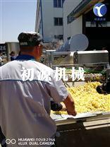 升级版油炸薯条加工生产线新款上市