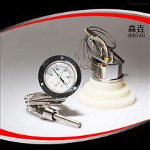 200RF21121压力式温度计