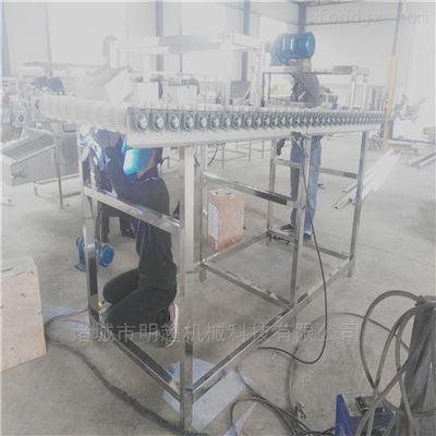MSQXJ-20毛刷水果清洗机