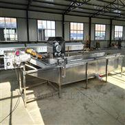 山东净菜加工生产线 中央厨房洗菜流水线 净菜加工清洗流水线