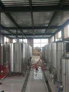 桑葚果酒生产线设备
