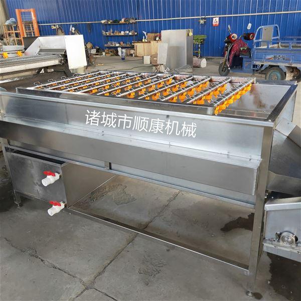 土豆毛辊清洗机 厂家直销限时特价