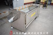 安徽土豆去皮清洗机厂家