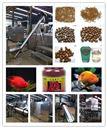全自动鱼虾饲料 加工设备