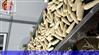 专业速冻粘玉米加工设备
