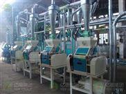 10吨级面粉加工设备