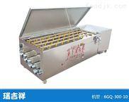 6GQ-300-12型清洗机