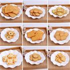 北京新品五谷杂粮小零食饼干设备生产线