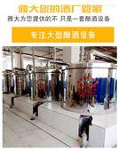玉米酿酒设备厂家直销 出酒率高 省时省燃料