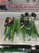 全自動蔬菜熱收縮膜包裝機