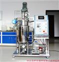 GBRY系列自动厌氧发酵罐