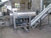 杨梅螺旋榨汁机
