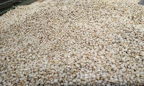 小薏米储藏年夜市场 食物机器助拉财产开展
