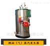 盘锦小型燃气蒸汽发生器设备