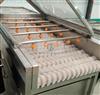 JX-150輥刷清洗機毛桃清洗設備